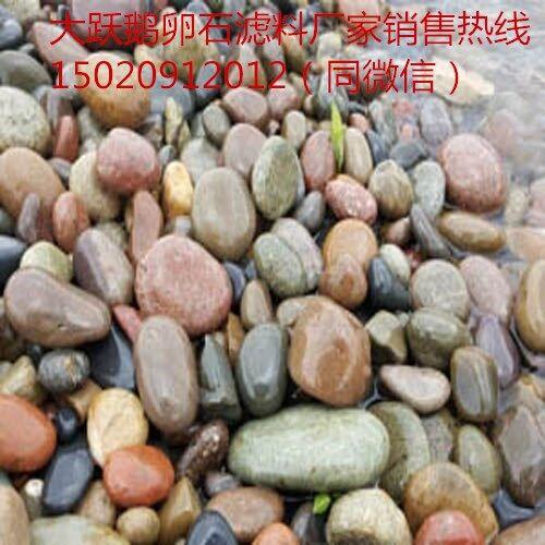 黄冈市白色鹅卵石供应