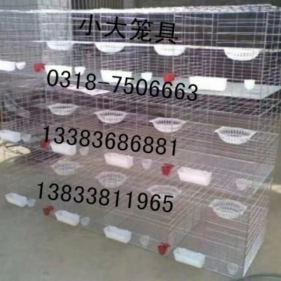 供应各种鸡鸽兔笼狐狸笼貉笼宠物笼等养殖笼具及相关配套设备