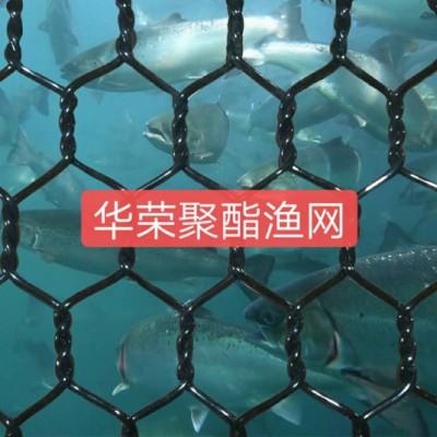 PET聚酯石笼网 PET聚酯六角网 PET聚酯拧花网聚酯渔网