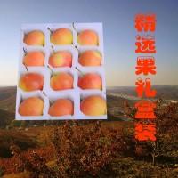 东北鞍山南果梨软梨水果5斤装礼盒南国梨梨子新鲜产地直供香水梨
